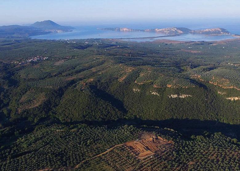 Tsaglis Extra Virgin Olive Oil - Kalamata - Messinia