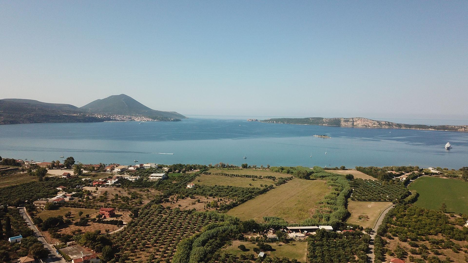 Tsaglis Extra Virgin Olive Oil - Kalamata Messinia - Pylos - Gialova - Southwest Peloponnese