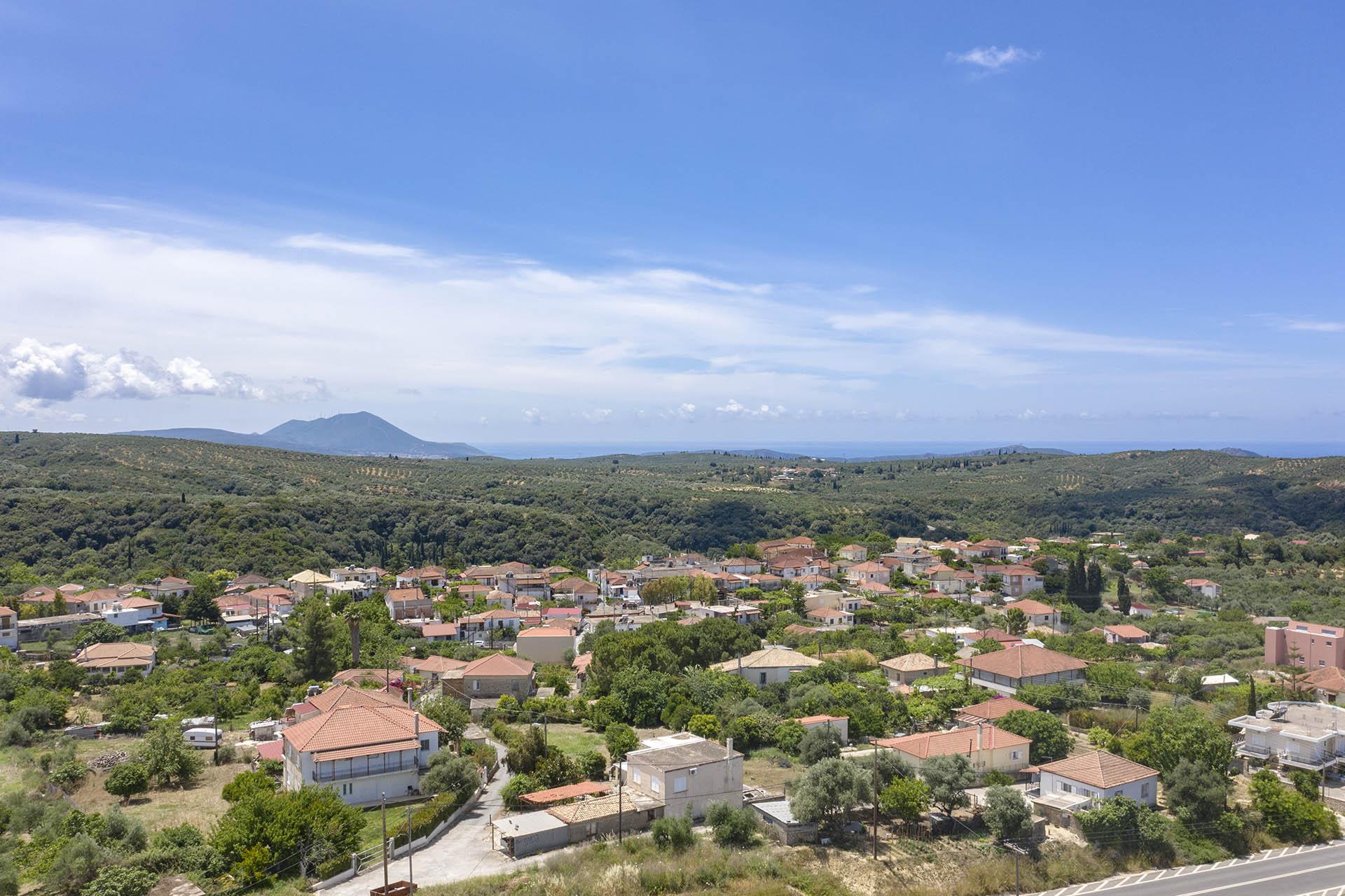 Tsaglis Extra Virgin Olive Oil - Kalamata Messinia - Iklaina - Southwest Peloponnese